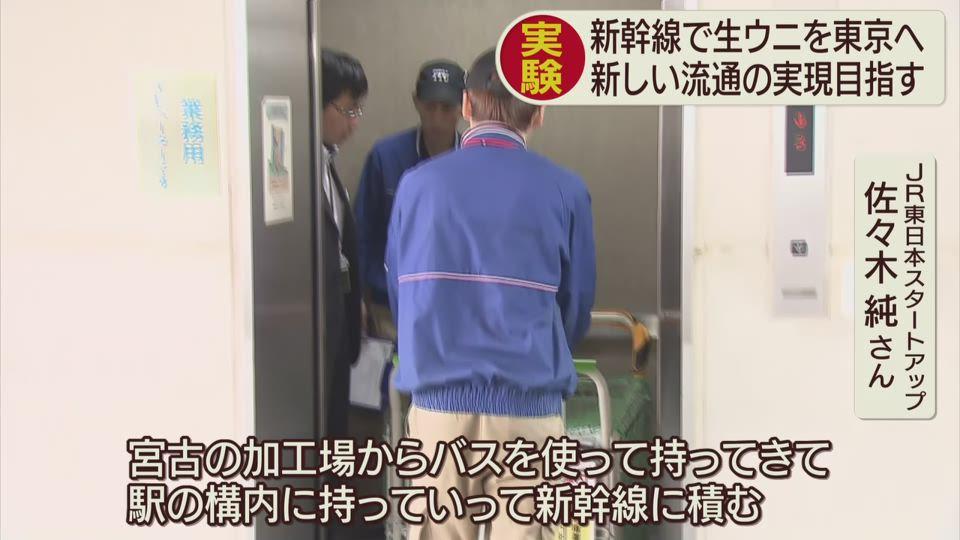 新幹線で生ウニを東京へ実証実験