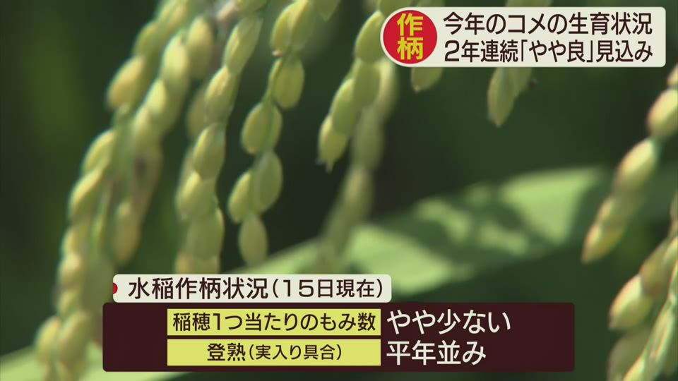 水稲の作柄概況発表
