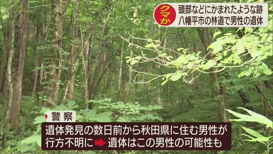 クマに襲われたか 男性遺体発見