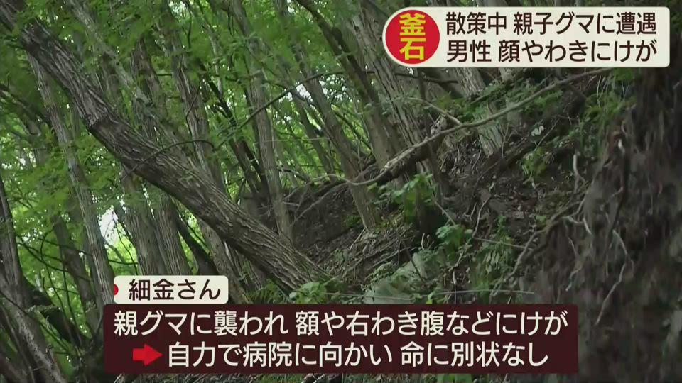 釜石 クマによる人身被害