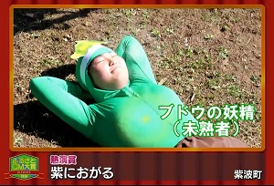 ふるさとCM大賞2018 紫波町